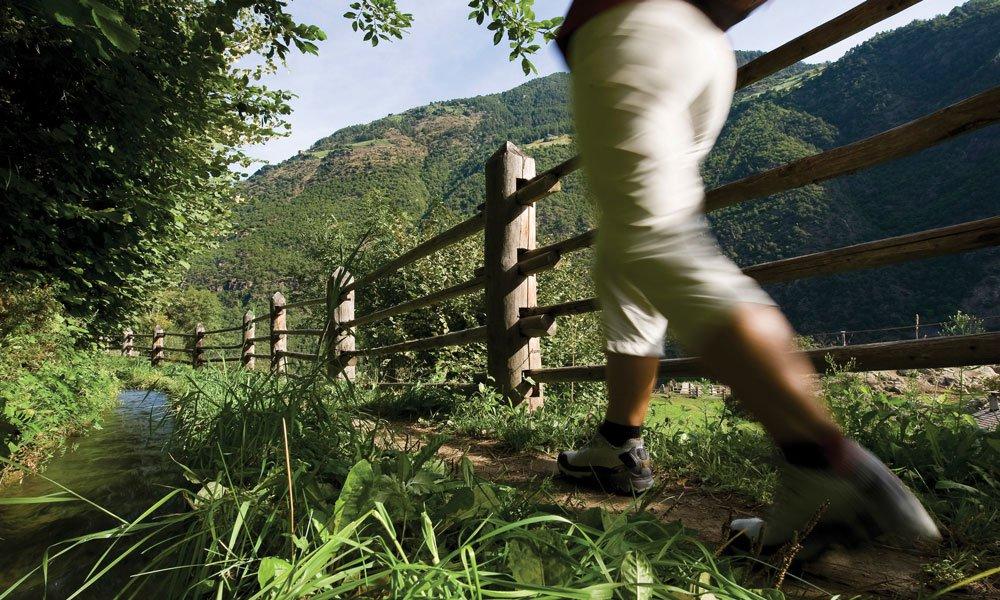 Berglauf Südtirol für sportlich Ambitionierte: Seiser Alm Halbmarathon und Brixen Dolomiten Marathon