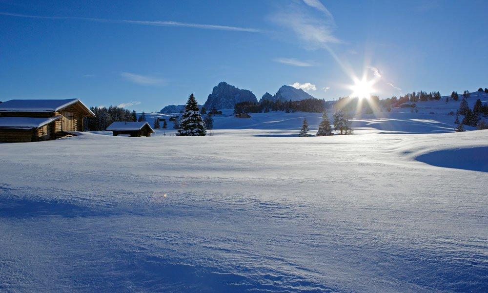 Godetevi la vacanza sull'Alpe di Siusi e scoprire la regione in modo attivo