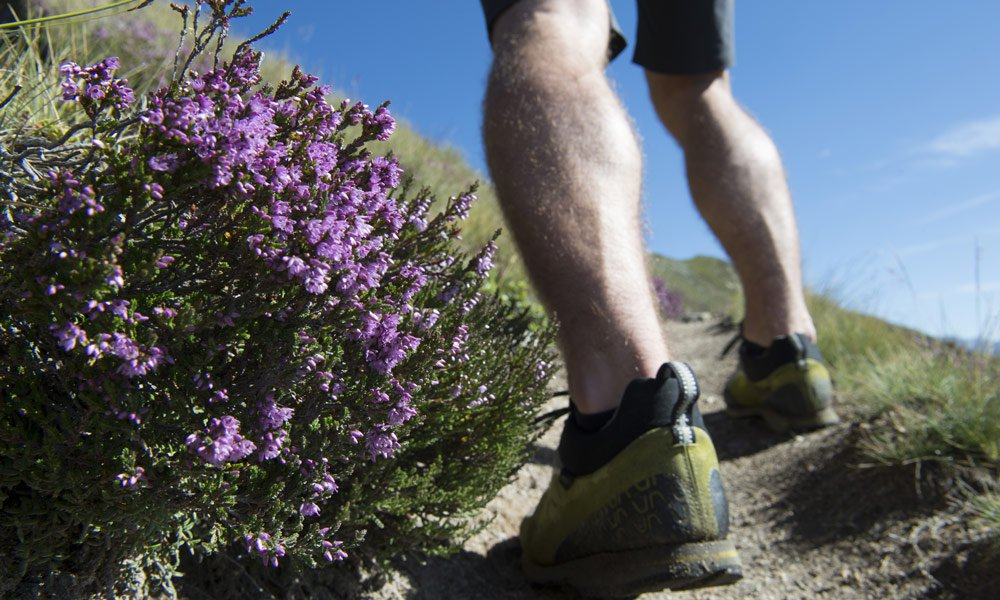 Two hiking tips for you