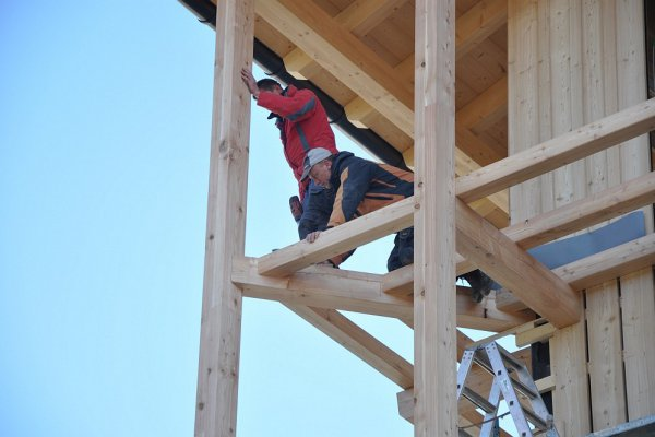 Unsere fleißigen Arbeiter in luftiger Höhe.
