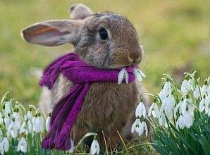 Ein glückliches Osterfest allen unseren lieben, treuen Gäste und Besucher der Seite.